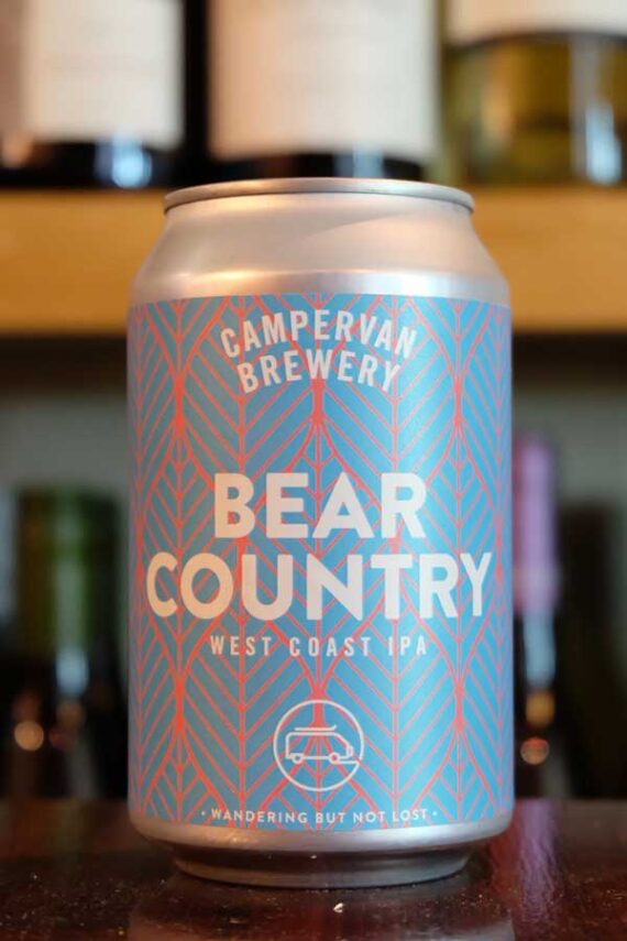 Campervan-Bear-Country